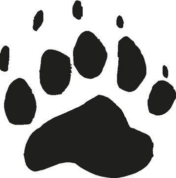 bear track. I want this on the bottom of my foot I think...