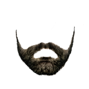 HQ Beard PNG Transparent Beard.PNG Images..