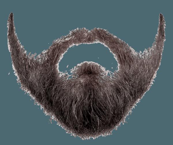 Beard PNG Image.
