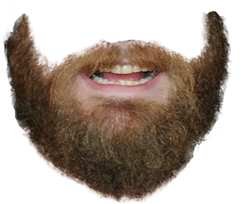 Download Transparent Beard PNG.