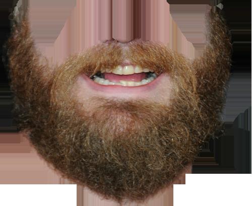 Download Transparent Beard PNG.