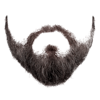 Download Beard Free PNG photo images and clipart.