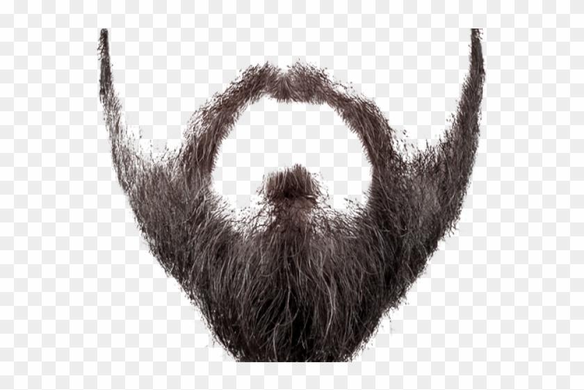 Realistic Clipart Beard.