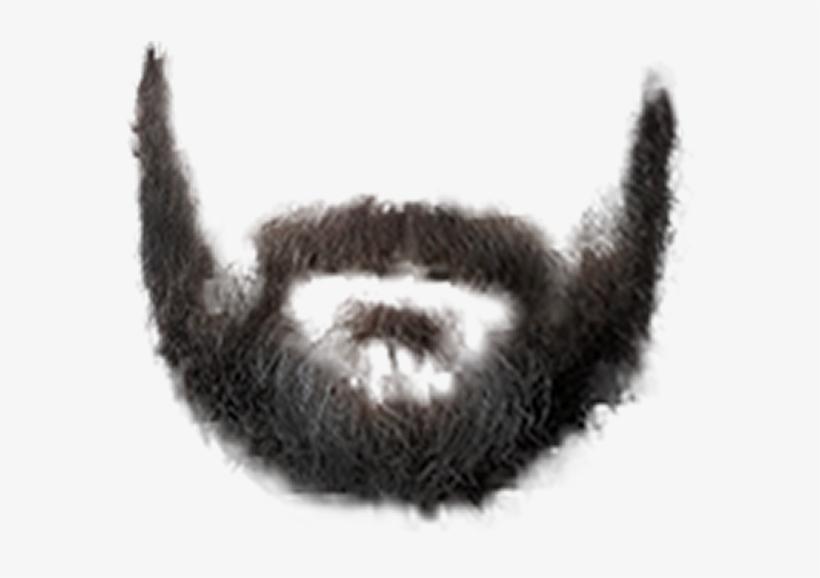 Real Beard Png.