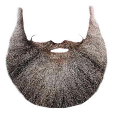 Download BEARD Free PNG transparent image and clipart.