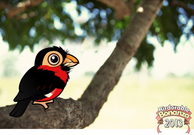 Cute Bearded Barbet by Birdorable < Meet the Birds.