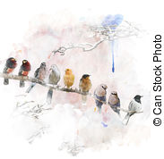Bearded barbet Illustrations and Clipart. 3 Bearded barbet royalty.