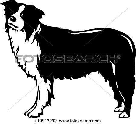 Collie Clipart Royalty Free. 360 collie clip art vector EPS.