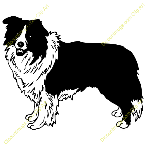 Gallery For > Clipart Border Collie Dogs in Bathtubs.