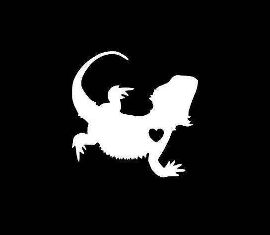 Pin on Greatest Reptile Apparel.