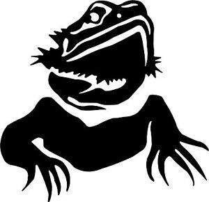 Details about Standing Bearded Dragon Vinyl Sticker Badge Picture Wall Art  Car Sticker Decal.