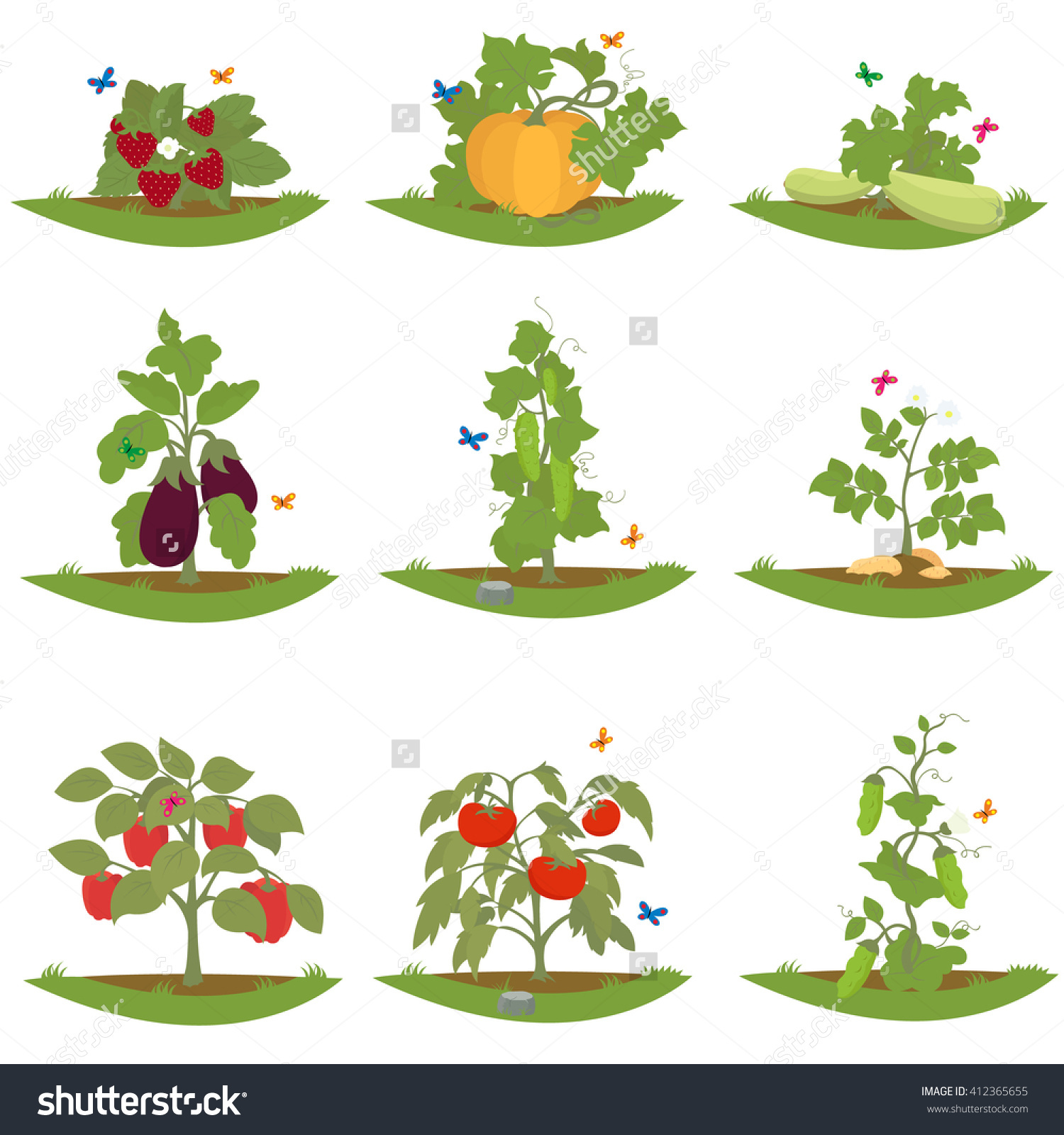 Bush Fruitbearing Plants Isolated Cultured Plants Stock Vector.