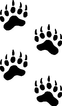 Bear Paw Track Images.
