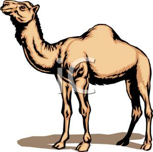 A_Camel_Royalty_Free_Clipart_Picture_100424.