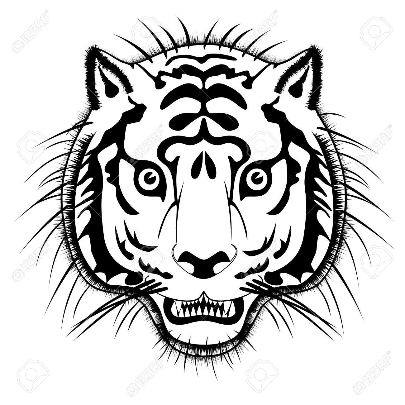Vector Tiger Head.