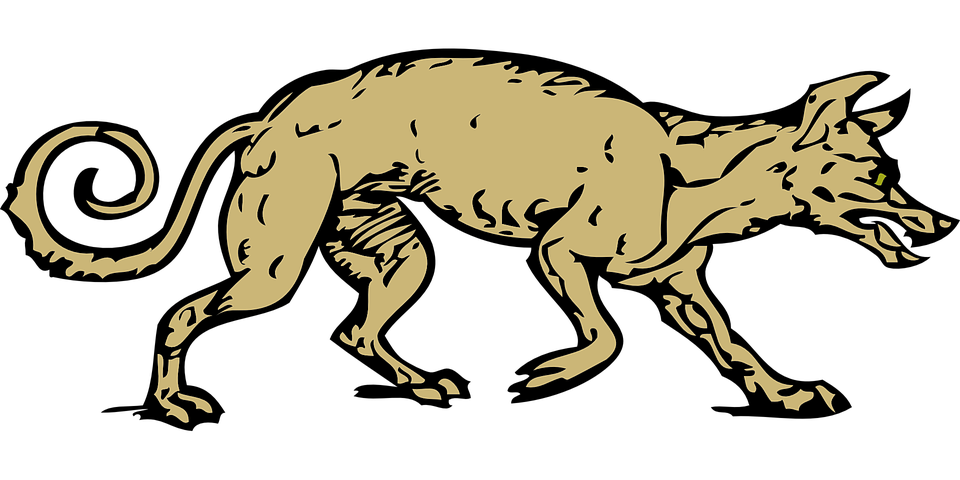 Free vector graphic: Coyote, Wolf, Animal, Canine, Dog.
