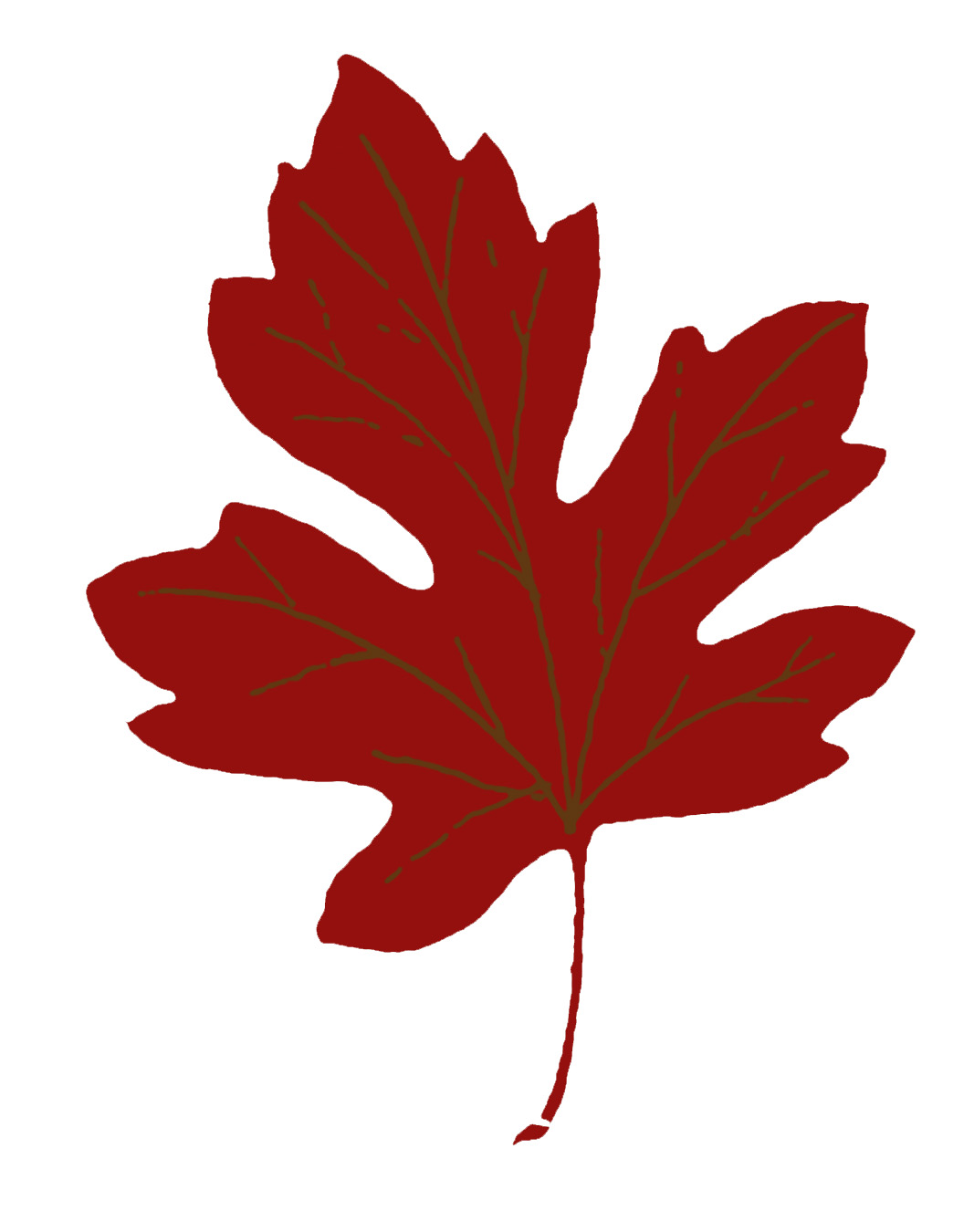 Maple Leaf Silhouette.