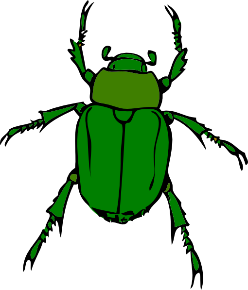 Beetle Clipart.