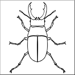 Beetle clipart black and white, Beetle black and white.