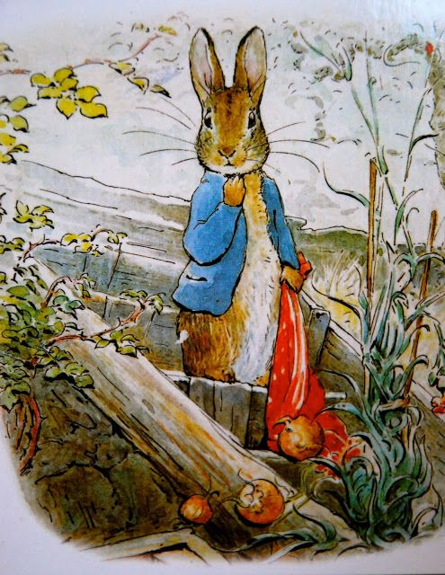 1000+ images about clipart beatrix potter on Pinterest.