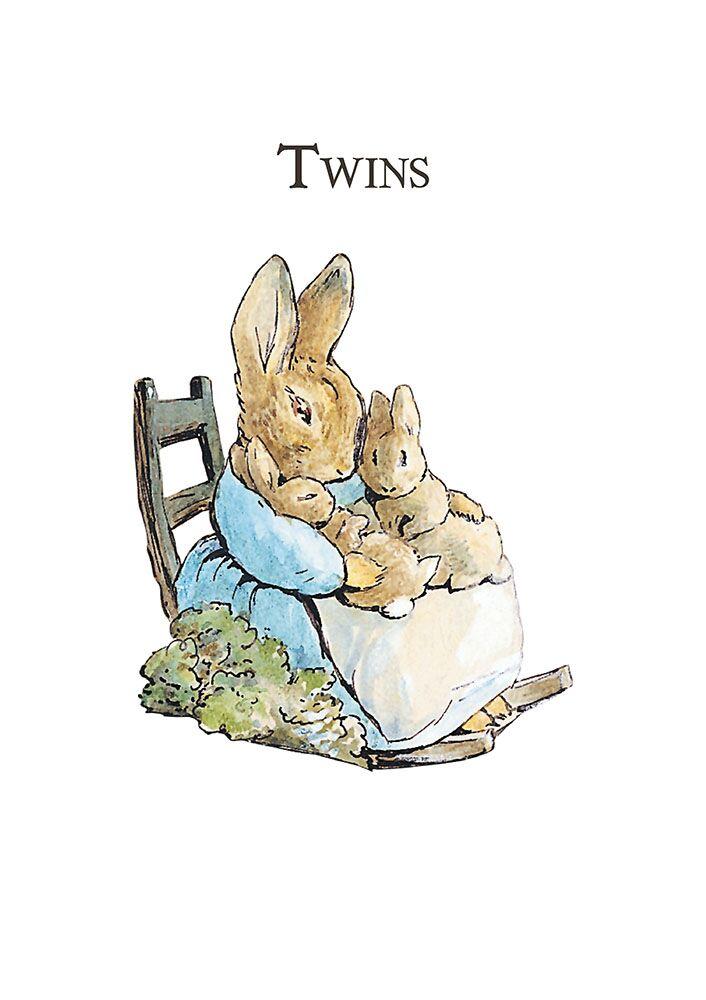 Mrs Rabbit 'Twins' Card.