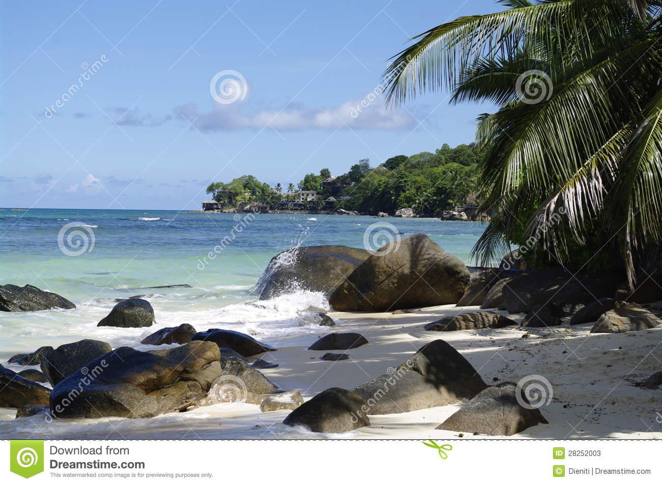 Shady Place Under Palm Trees At Beau Vallon Beach, Seychelles.