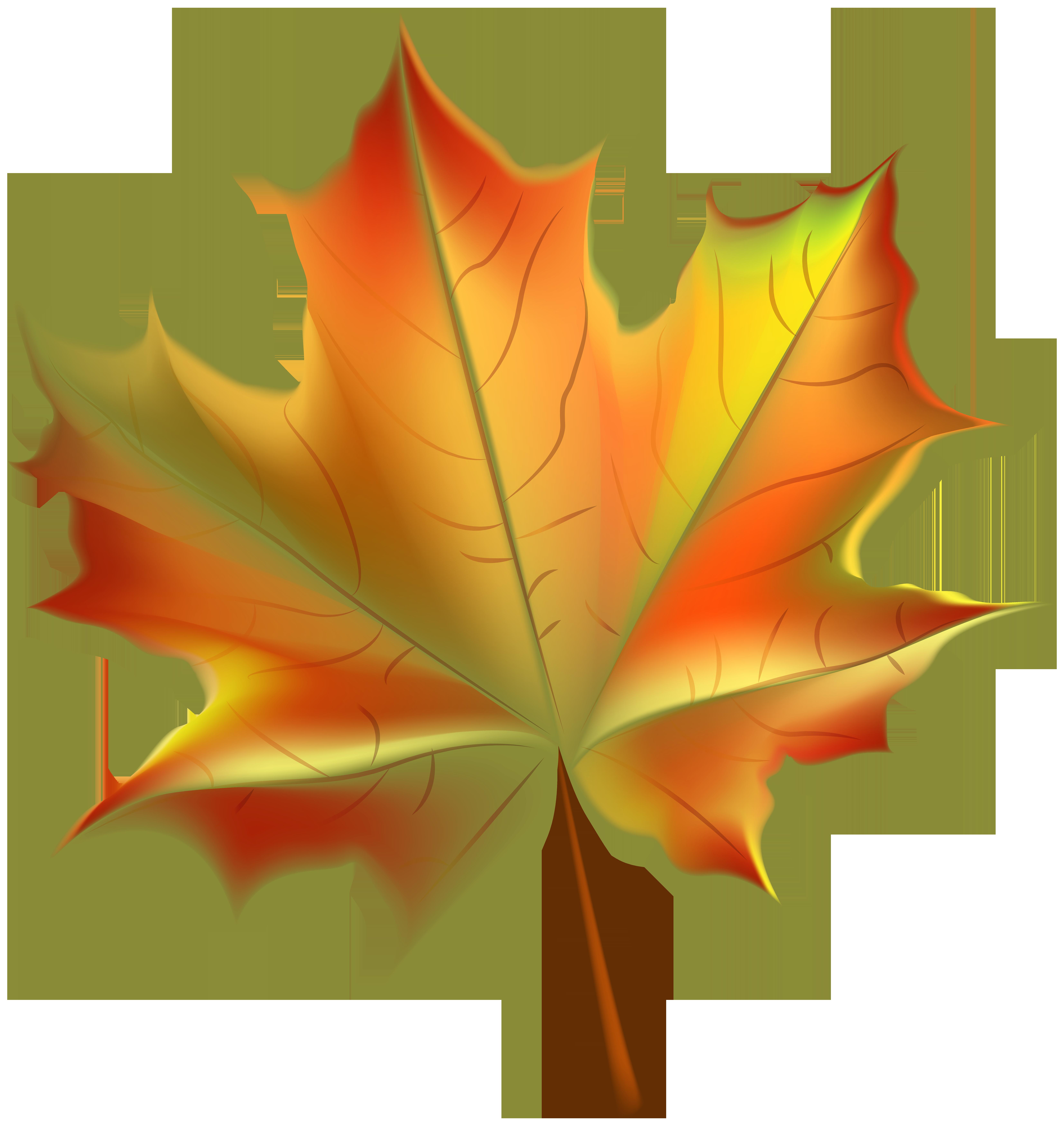 Beautiful Autumn Leaf Transparent PNG Clip Art Image.