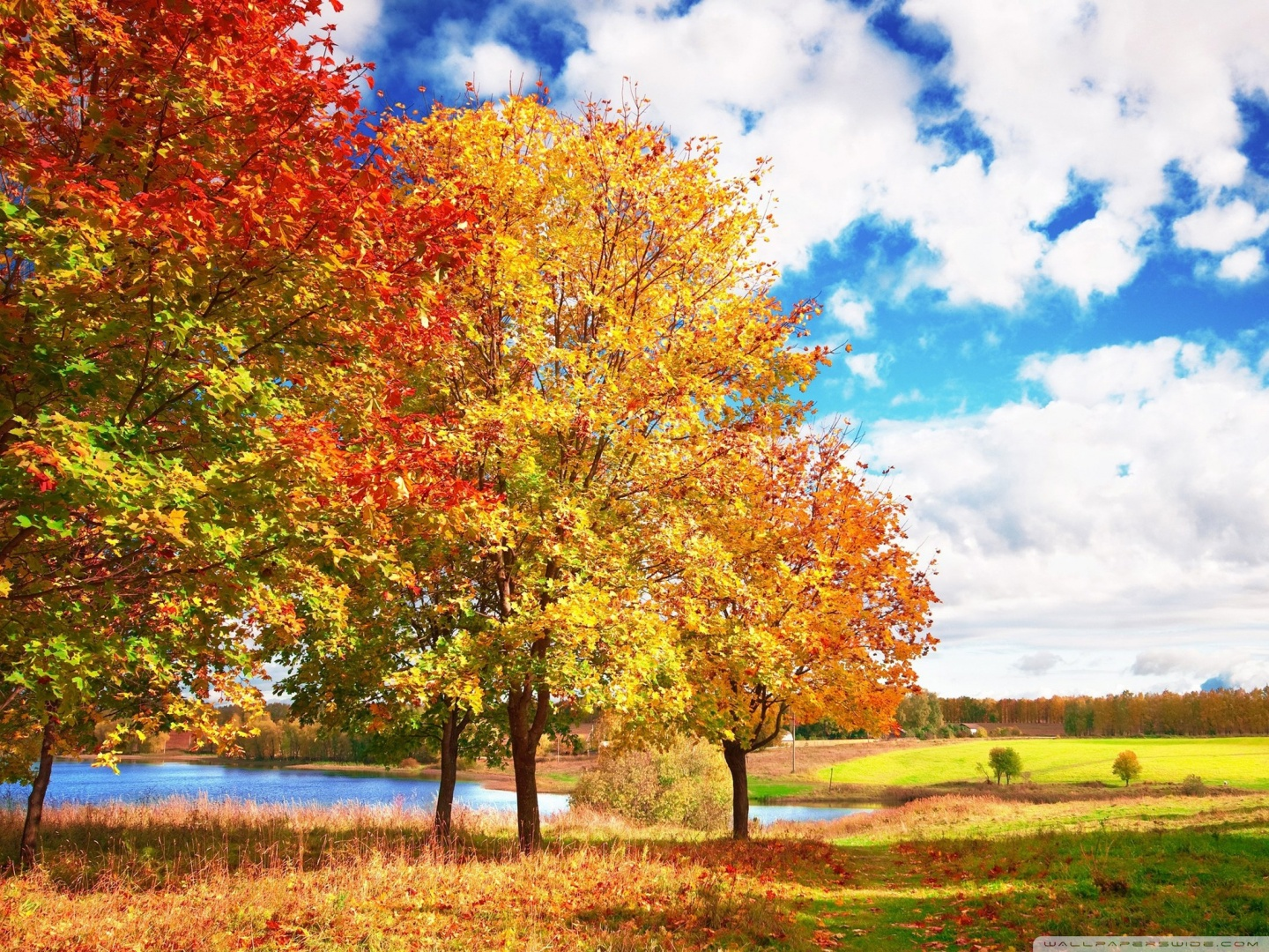 Beautiful Autumn Day HD desktop wallpaper : Mobile : Dual Monitor.
