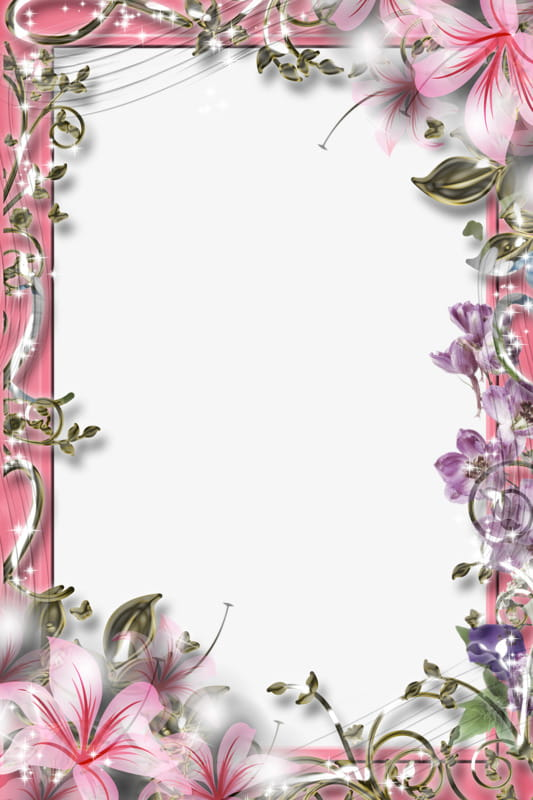 Beautiful flowers border material PNG clipart.
