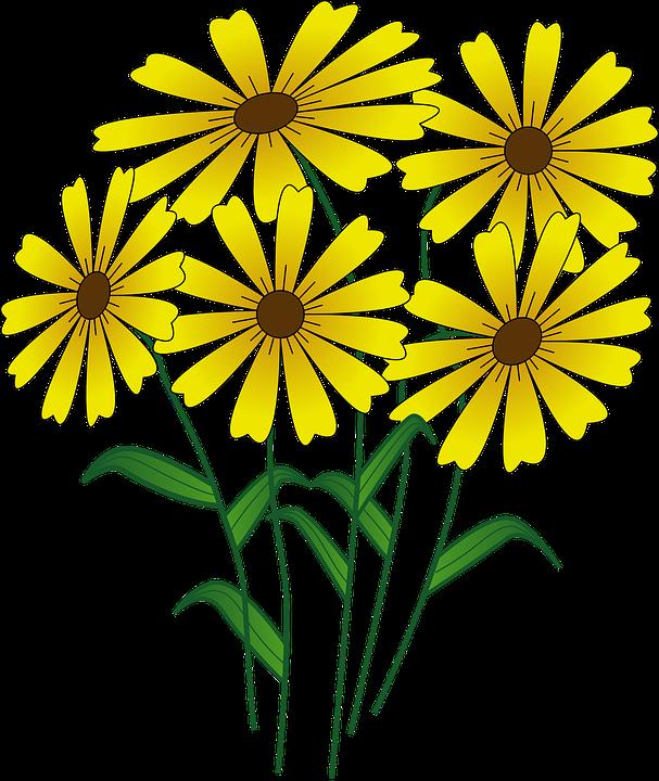 Free vector graphic: Flowers, Yellow, Daisy, Beautiful.