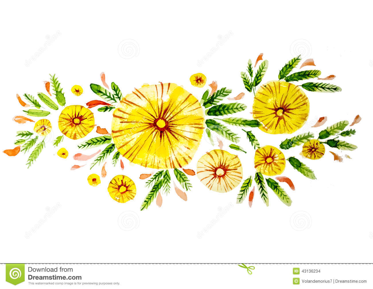 Beautiful Flowers Of Yellow Color Stock Illustration.