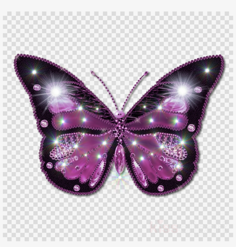Beautiful Butterfly Png Clipart Butterfly Butterflies.