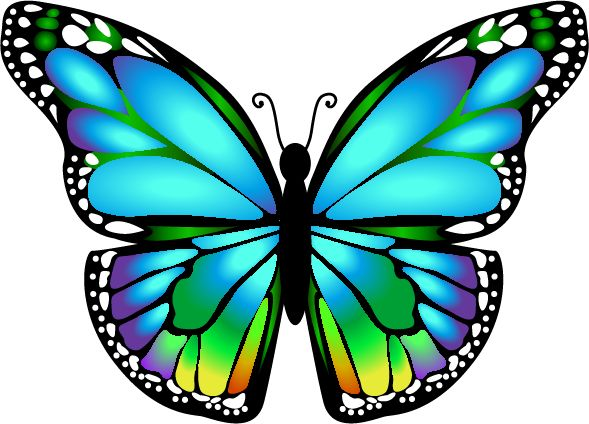 Beautiful Butterfly Clipart at GetDrawings.com.