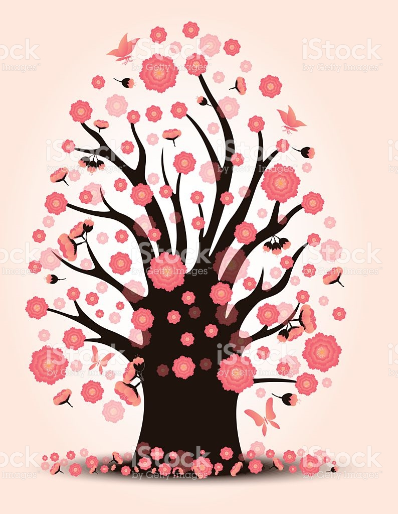Decorative Beautiful Cherry Blossom With Background Tree stock.