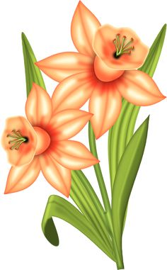 231 Best Flowers Clipart images in 2019.
