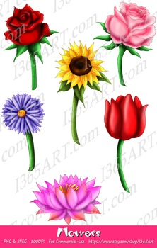 Beautiful Flower Illustrations Clipart 6 Pack Digital Graphics Instant  Download.