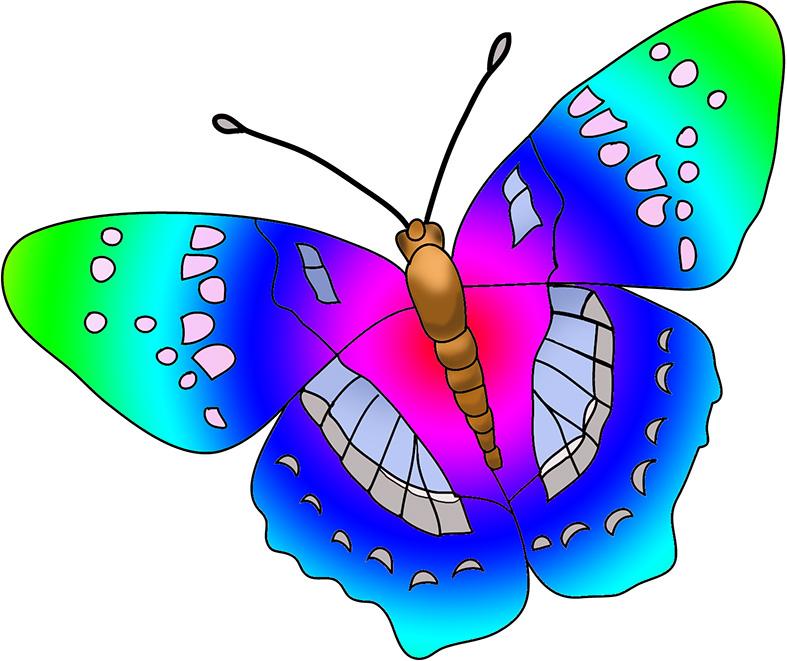 Images Butterflies.