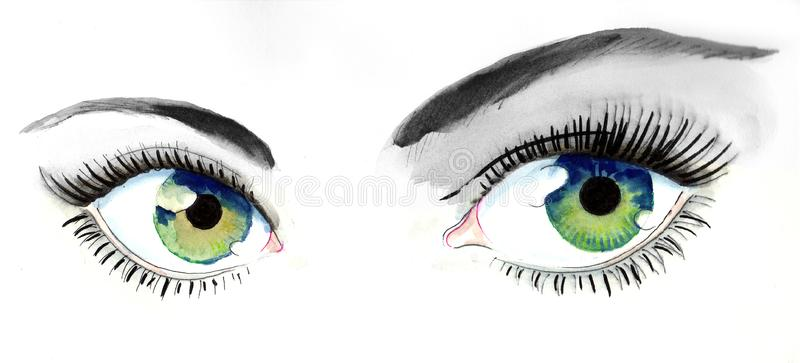 Beautiful Eyes Stock Illustrations.