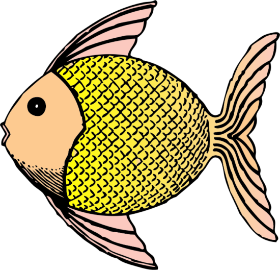 60 Beautiful Fish Clipart & Pictures.