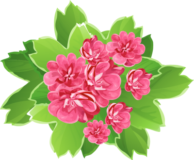 Latest beautiful flowers clipart.