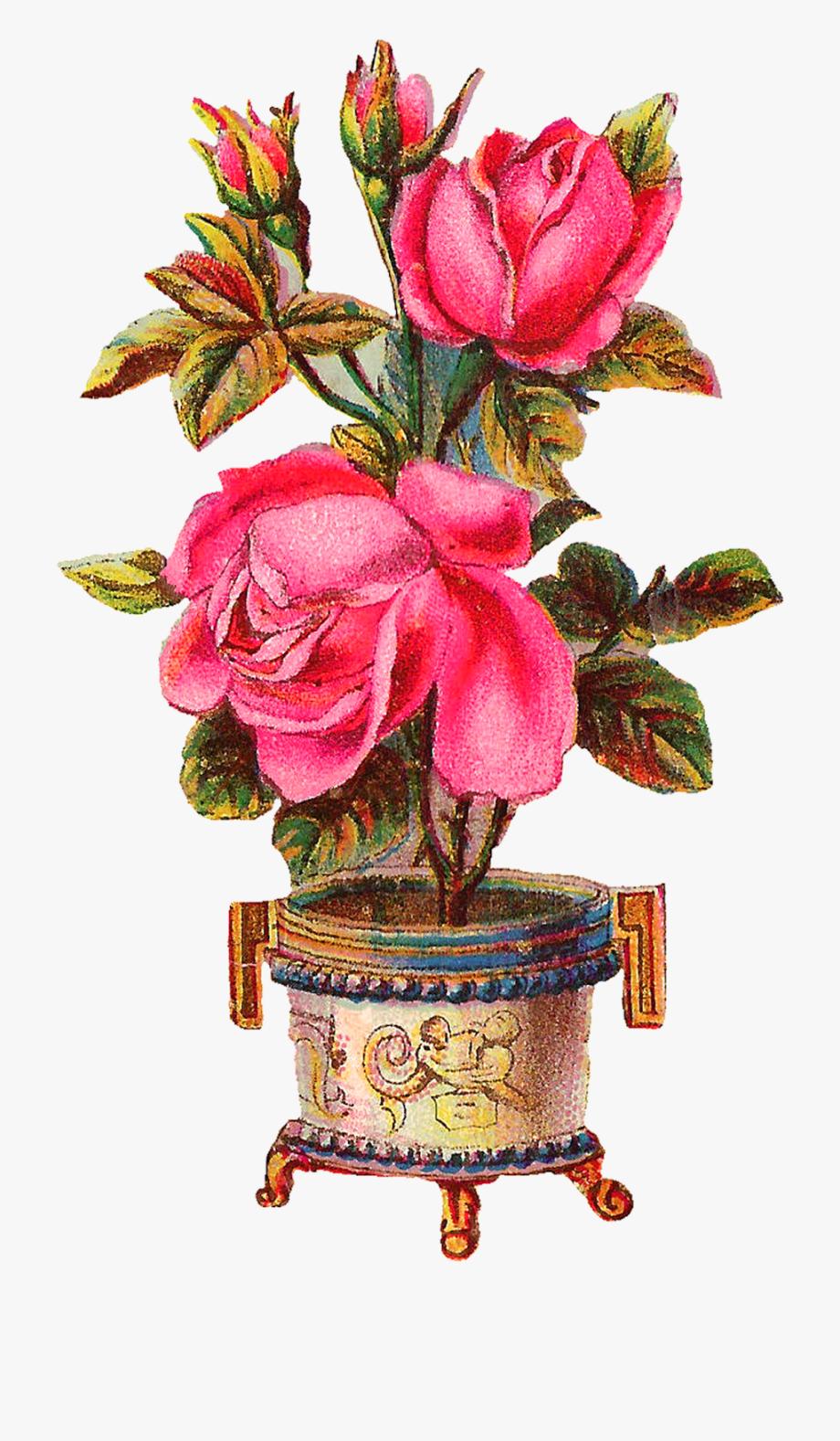 Beautiful Flower Vase Png , Transparent Cartoon, Free.