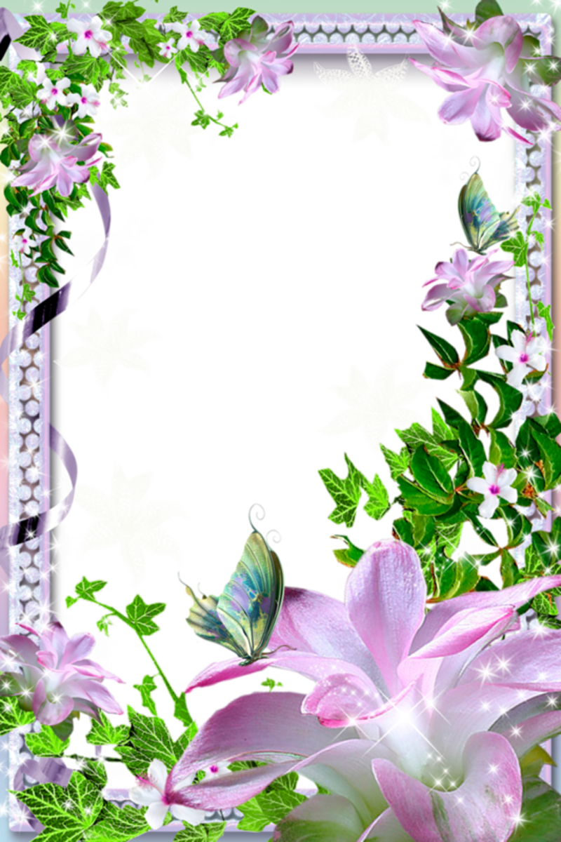Beautiful Transparent Photo Frame with Flowers.