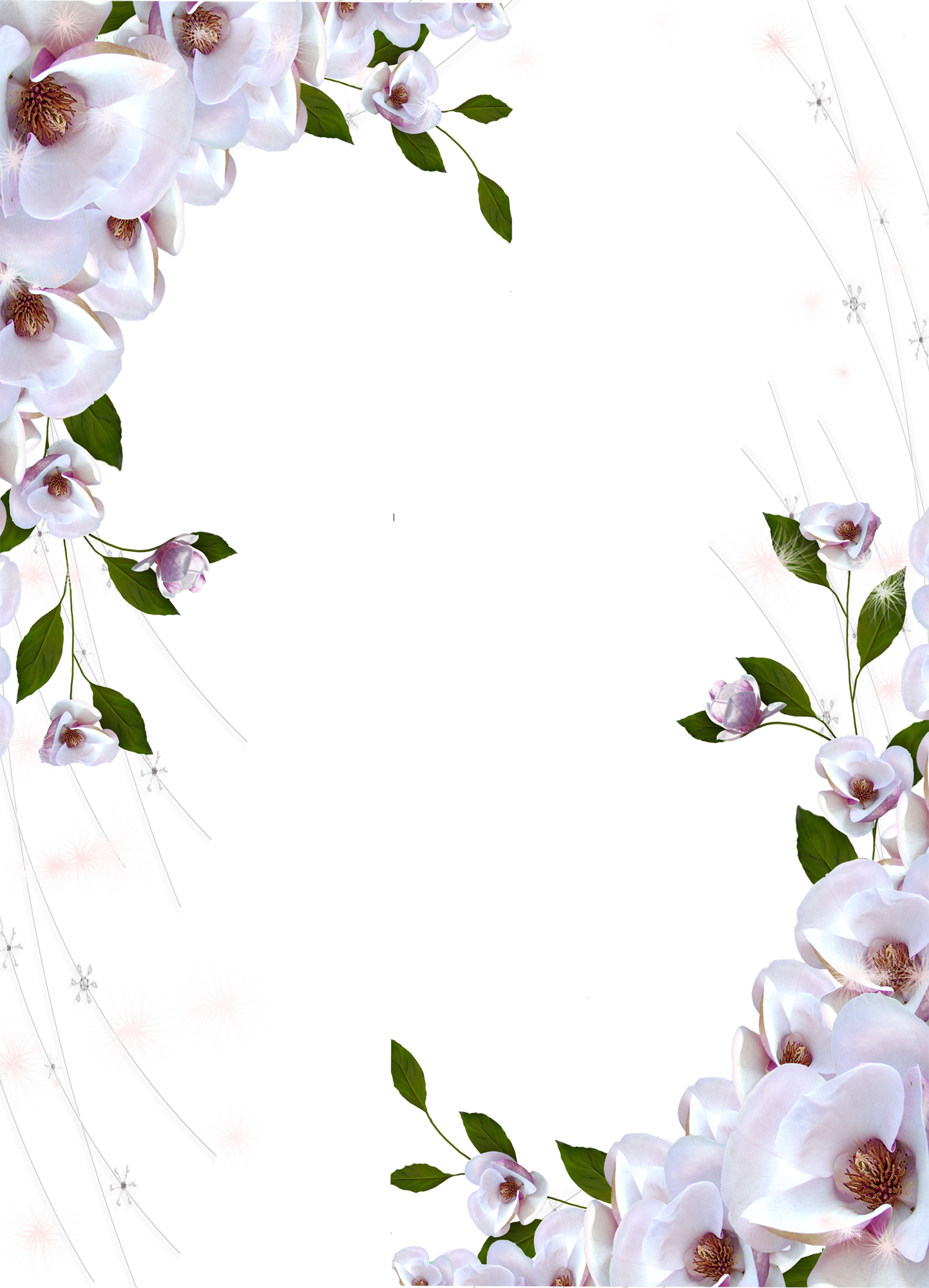 HD Transparent Photo Frame Beautiful Flowers.