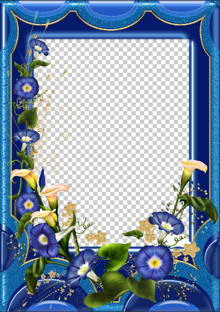 Beautiful flower photo frame download ( free photo frame psd png.