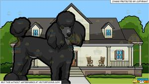 A Beautiful Black Poodle and A House With Big Front Porch Background.