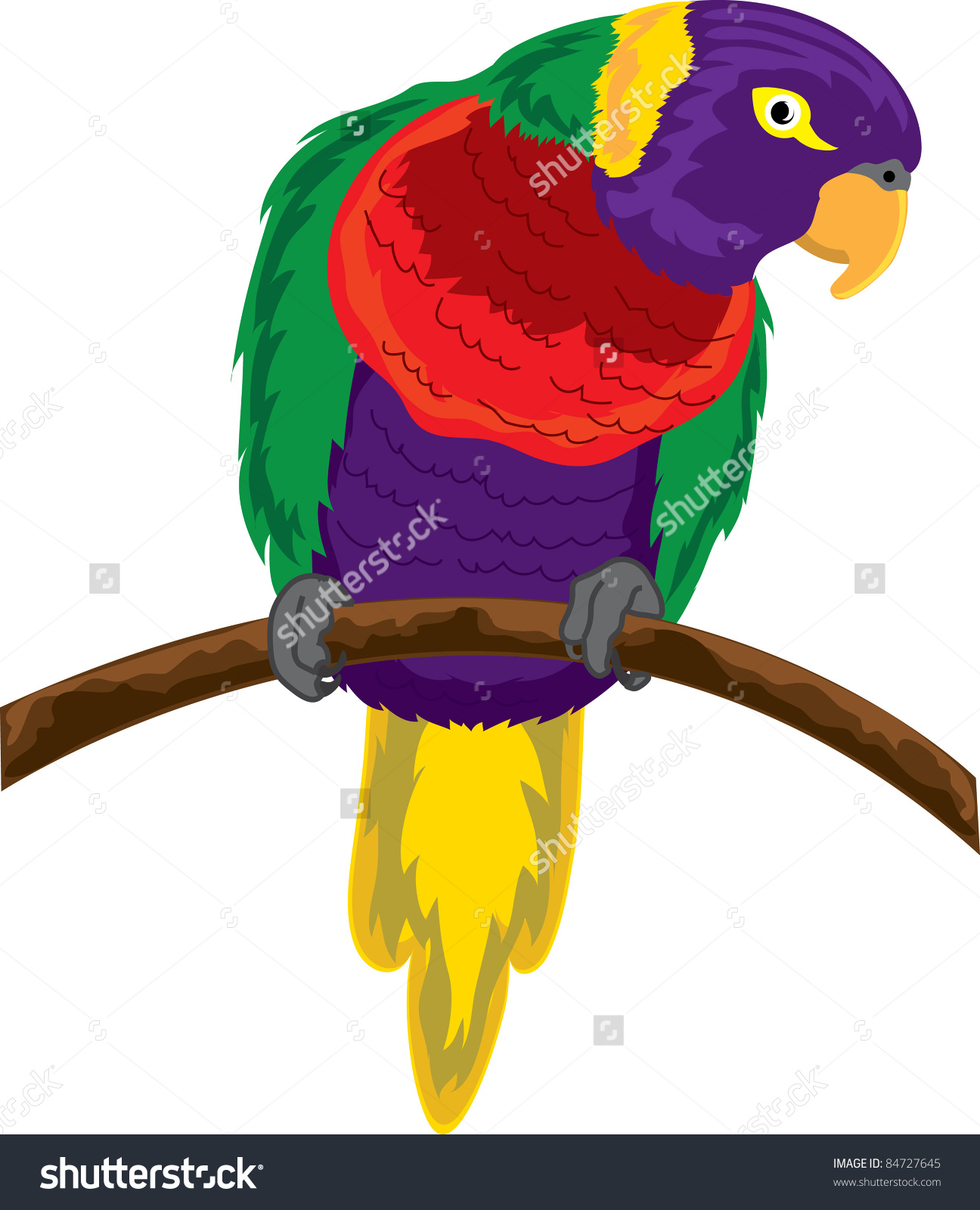 Clip Art Illustration Of Colorful Parrot Perched On A Piece Of.