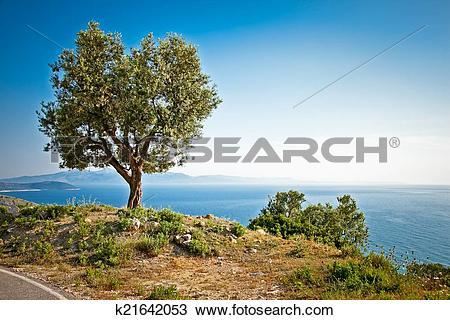 Stock Photo of Beautiful panoramic view on ionian sea, Albania.