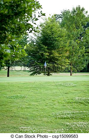 Pictures of beautiful park geen grass and trees background.