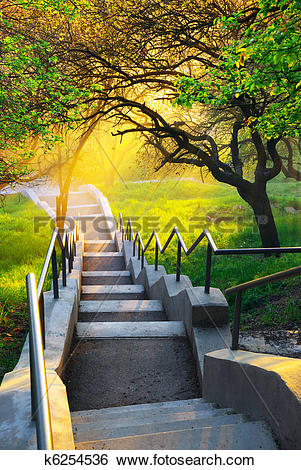 Stock Images of Sunshine in beautiful park k6254536.
