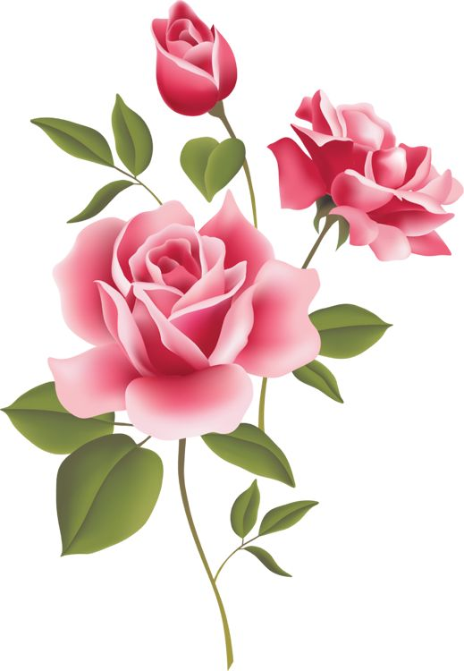 Beautiful clipart red roses.